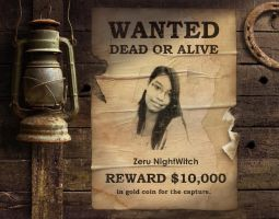 WANTED: Dead or Alive... by NightWitch14