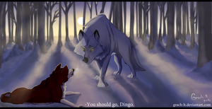 -You should go, Dingo by Grach-H