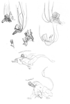 079 Sketches Galore by parenthesisgrey