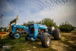 Ford Tractor by DragonDriver5