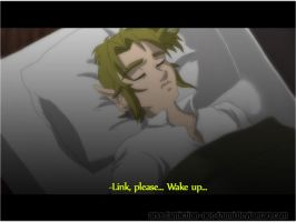LoZ fic anime shot- please, wake up by Noe-Izumi