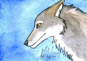 Coyote ATC sized painting by Lyrak
