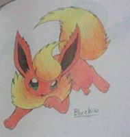 Orangey Flareon by Bluekiss131