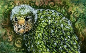 Baby kakapo by THE-RAttie