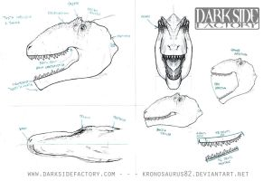 Giganotosaurus Model Sheet 2 by Kronosaurus82