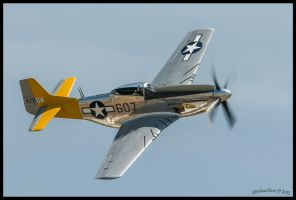 Spam Can 2013 472861 by AirshowDave