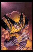 wolverine 305 re color by spidey0318