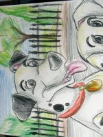 Pongo and Purdie by Balsamo