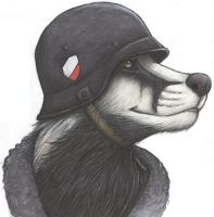 Luftwaffe Badger by Zyklon-Bernard