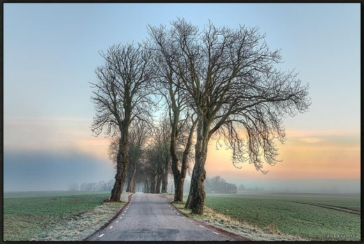 Allee. by Exparte-se