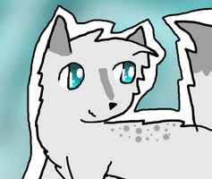 Thrush(wing) of WindClan by Fangirl-Trash