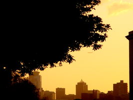 Sunset in the City by batcii