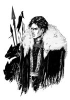 Spear And Wolf: Laran Cousland by croaky