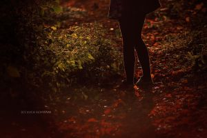 red, red autumm by luuae