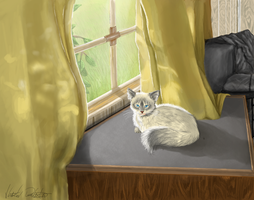 Window Cat by Tater-labyrinth