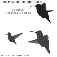 Hummingbird Brushes by sd-stock