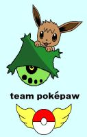 Team Pokepaw by FelixFox1991