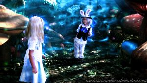 Follow the White Rabbit by Neven-Ebrez