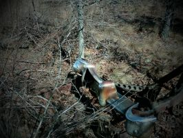 Abandoned Carwreck part 11 by TheProdigy100