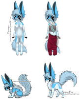 Ice Fox/Anthro Auction - Closed by Feralx1