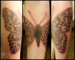 A Moth To Match by RobRuckus