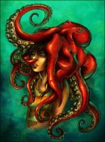 my hat is an octopus by tstn