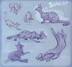 Subcat Sketchpage by colonel-strawberry