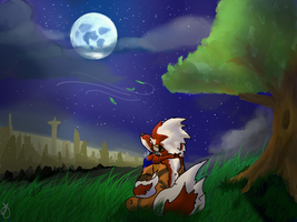 Talking To the Moon by RedRoronoa
