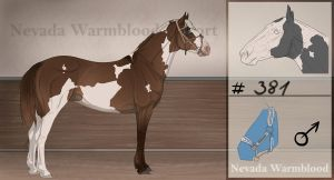 Nevada Warmblood 381 OPEN by BRls-love-is-MY-Live