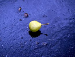 Pear by Moore-Horn