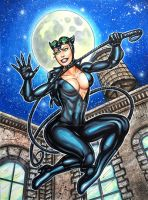 CATWOMAN PINUP by AHochrein2010