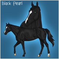 Black Pearl by Rosenhill