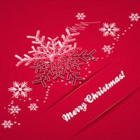Free Christmas Vector Greeting Card by cristina012