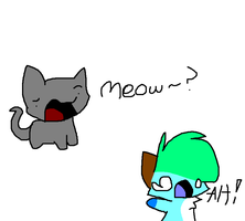 *Meow?* by qoaties