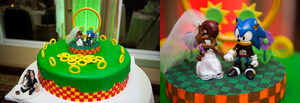 Sonic and Sally Wedding Cake Topper by Wakeangel by techaspike