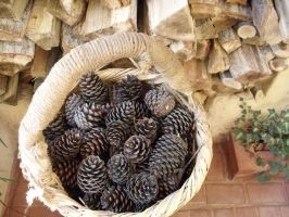 Pinecones Basket 02 by highlander12