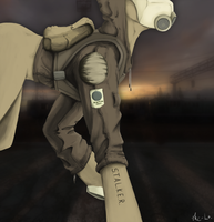 S.T.A.L.K.E.R. by ParadoxicalReaction