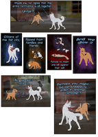 CC Round 3: Pg16 by Songdog-StrayFang