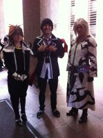 Sora, Rin, and Xemnas(Mechacon 2013) by Hound-02