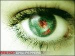 Red Hot Chili Peppers by PuzzledBread