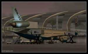 MD-11 At OMDB by flightlevel-380