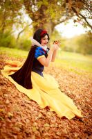 Snowwhite by Andy-K