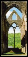 Tintern Abbey Cropped by Forestina-Fotos