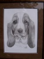Basset Puppy by LindseyTaylor