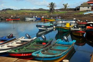 Bevy of boats 1 - Easter Island by wildplaces