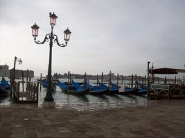 venice by bluster358