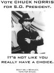 Vote Chuck Norris 2 by MjolnirIF