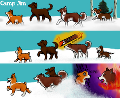 Corgi's can't be first O.o by momodory09