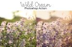 Photoshop Action: Wild Cream by sabinefischer