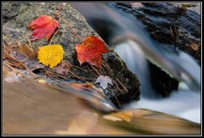 Colors at Buttermilk Falls by IgorLaptev